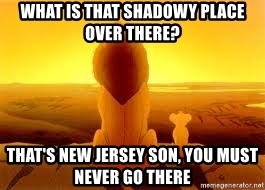 what-is-that-shadowy-place-over-there-thats-new-jersey-son-you-must-never-go-there